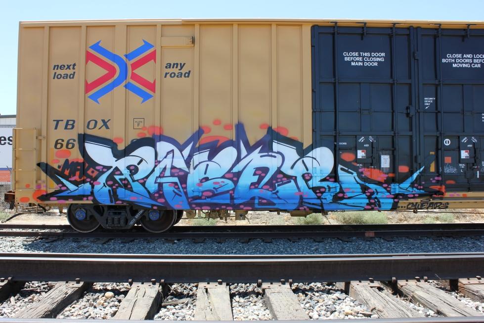 IMG_4197