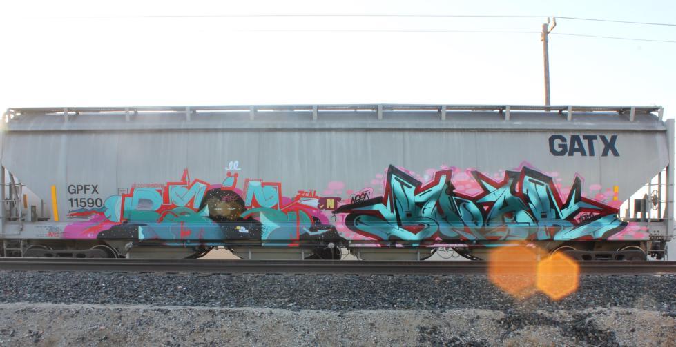 IMG_5209_crop